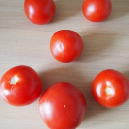 Pieczone pomidory z mięsem mielonym i z kaszą jaglaną