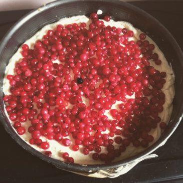 Tarta sernikowa z czerwonymi porzeczkami